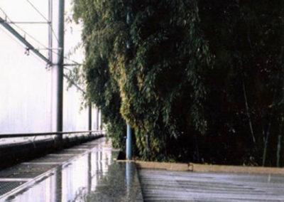 Serres bio-climatiques (1994)